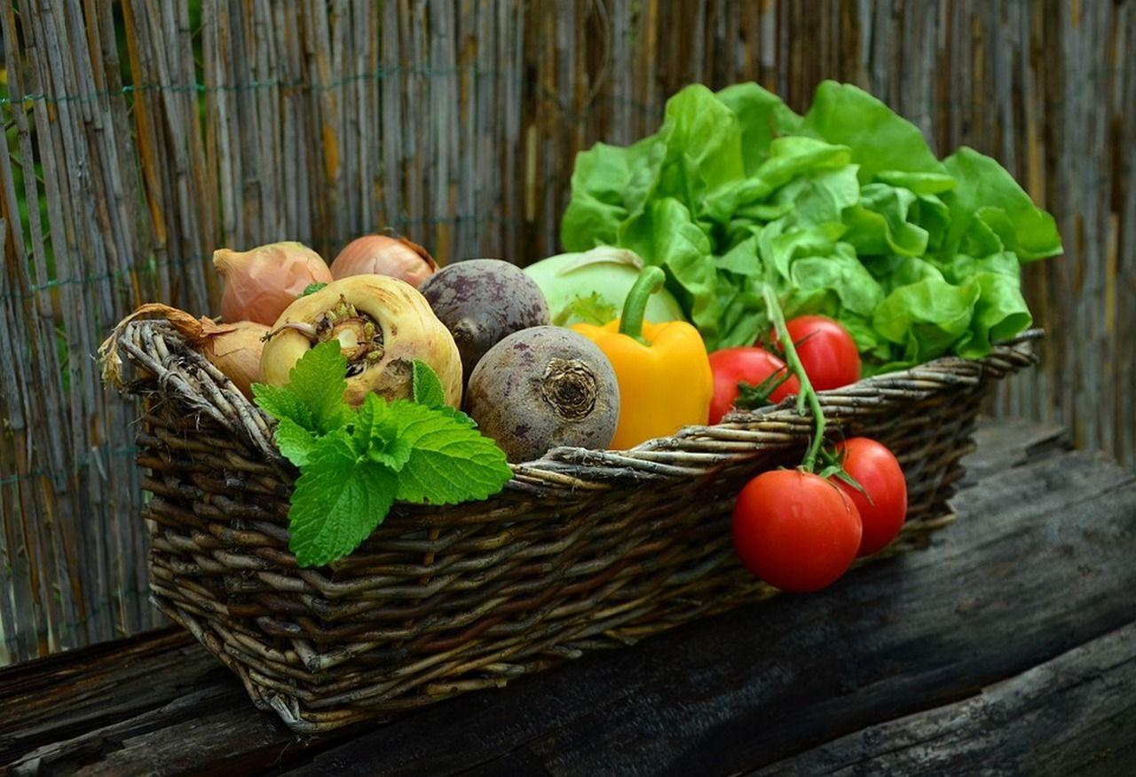 3 vegetarische gerechten voor een perfect diner